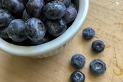 Kradel_Blueberries_105