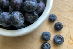 Kradel_Blueberries_106