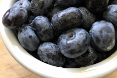 Kradel_Blueberries_107