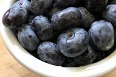 Kradel_Blueberries_107