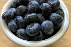 Kradel_Blueberries_108