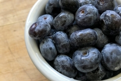 Kradel_Blueberries_109