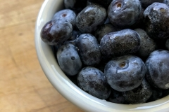Kradel_Blueberries_110