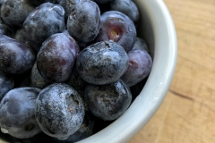 Kradel_Blueberries_111