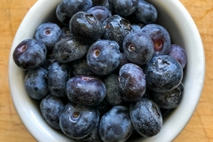 Kradel_Blueberries_112
