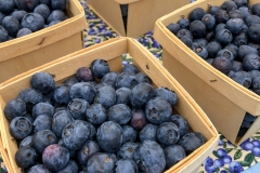 Kradel_Blueberries_114