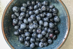 Kradel_Blueberries_4215