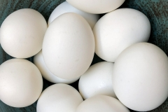 Kradel_Eggs_002