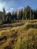 Kradel_Mt_Shasta_2004