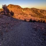 Kradel_Mt_Shasta_2177