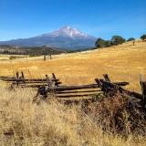 Kradel_Mt_Shasta_2214