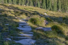 Kradel_Mt-Shasta_2978