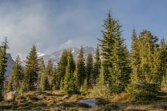 Kradel_Mt-Shasta_2981