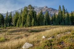 Kradel_Mt-Shasta_2991