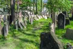 Kradel_Prague_5066