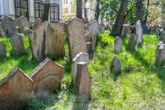 Kradel_Prague_5067