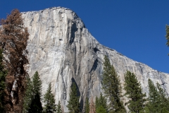 Yosemite_3673