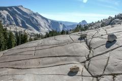 Kradel_Yosemite_3117