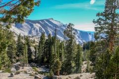 Kradel_Yosemite_3121