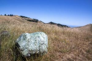 Kimberly Kradel Photography :: Rock on Mt. Tamalpais